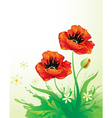 Natural background with poppy vector | Price: 1 Credit (USD $1)