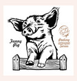 peeking funny pig - funny pig out - face vector image vector image
