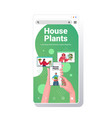 people taking care houseplants mix race vector image vector image