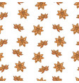 seamless pattern with clove and star anise vector image