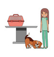 veterinary clinic petcare vector image vector image