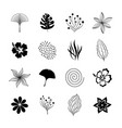 black botanical and organic design elements vector image