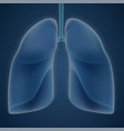 human lungs on blue background vector image