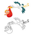 stork carrying a cute baby vector image vector image