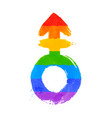 androgyne symbol vector image