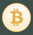 bitcoin icon for internet money vector image