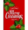 Christmas greeting card with holly leaf red berry vector image