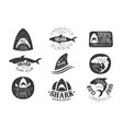 dangerous shark surf club set black and white vector image