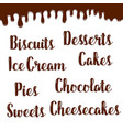 desserts names of chocolate writings poster vector image vector image