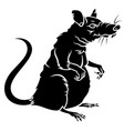 rat silhouette 001 vector image