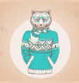 retro hipster fashion animal bear vector image vector image