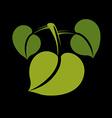 Three flat green leaves Herbal and botany art vector image vector image