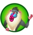 Baboon cartoon vector image vector image