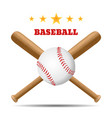 baseball and baseball bat isolated on white vector image vector image