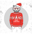 christmas hipster fashion animal bear vector image