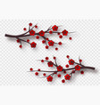 decorative elements for chinese holidays vector image