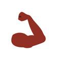 flexed arm icon vector image