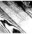 grunge wooden background vector image vector image