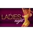 Ladies night banner Beautiful glamorous vector image