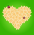 Romantic heart flowers and ladybug vector image