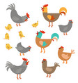 set of cute chickens set of cute chickens vector image