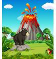 bear in the mountain vector image