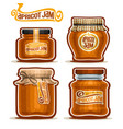 apricot jam in glass jars vector image vector image