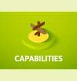 Capabilties isometric icon isolated on color