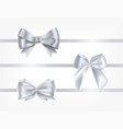 collection silk silver ribbons decorated vector image vector image