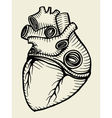 human heart sketch vector image vector image