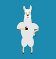 lama alpaca thumbs up and winks emoji animal vector image