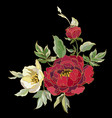 red peony flowers vector image vector image
