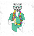 retro hipster animal bear with tropic cocktail vector image vector image