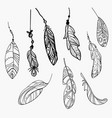 set stylized bird feathers collection vector image vector image