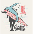 surfing shark - print for boy apparel in custom vector image vector image