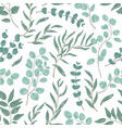 eucalyptus leaves colorful seamless pattern vector image