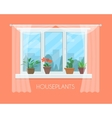 House plants in pots on window with a curtain vector image vector image