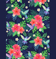 hummingbirds tropic pattern vector image