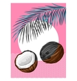 Poster with coconuts Tropical abstract background vector image