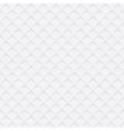 White web texture vector image