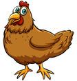 A spring chicken idiom vector image vector image