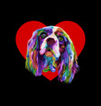 colorful cocker spaniel dog in love heart logo vector image