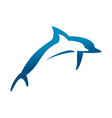 double jumping dolphins symbol design vector image