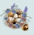 easter vintage card with bird nest and eggs vector image vector image