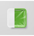empty green plastic food square container with vector image vector image