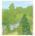 forest Trees vector image