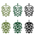 Hops design template vector image vector image