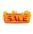 hot sale banner or website button on fire of vector image