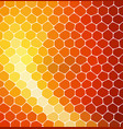 mosaic yellow and orange stones laid in a row on vector image vector image