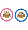 Owl Babies vector image